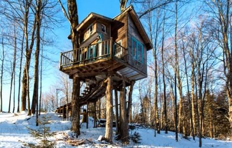 treehouse-620x430
